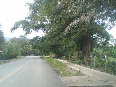Pavimento Bahia Ballena