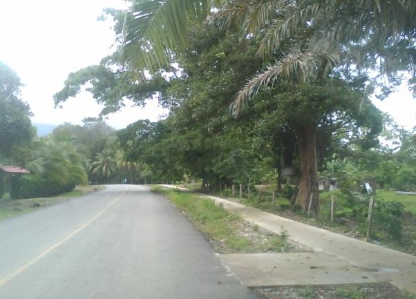 Imagen Pavimento Bahia Ballena